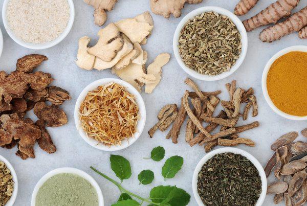 calanna pharmacy - blog image naturopathy gut health