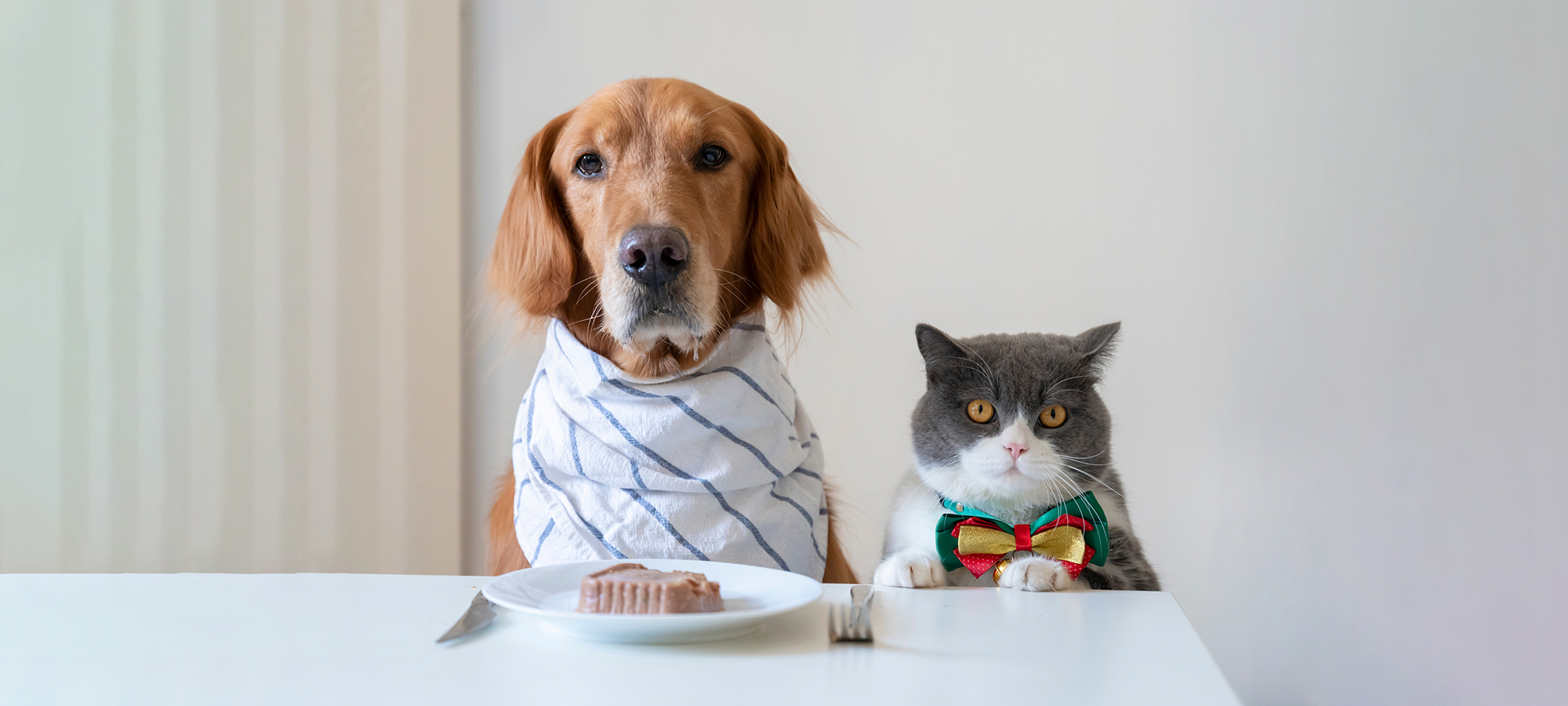 4 Benefits of Feeding Your Pets Whole Foods